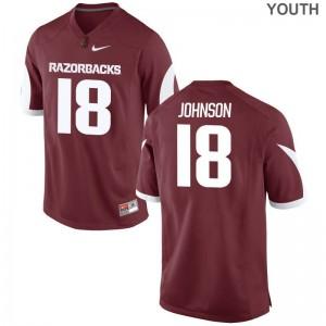 Blake Johnson Arkansas Razorbacks Alumni Youth Game Jerseys - Cardinal